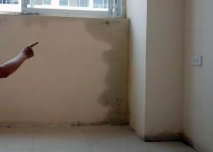 Cách chống thấm khi tường nhà bị thấm nước