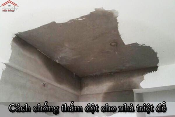 Cách chống thấm dột cho nhà triệt để, mang lại hiệu quả cao nhất